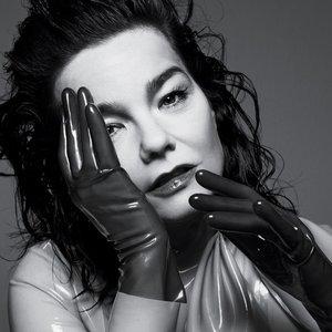 Image pour 'Björk'