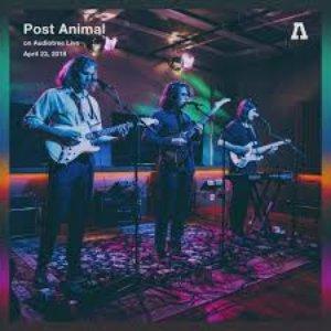Post Animal on Audiotree Live