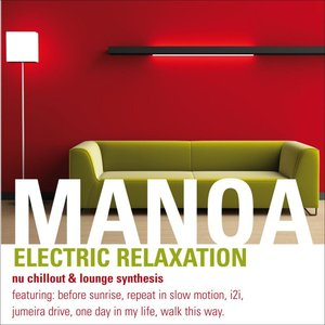 Electric Relaxation (Nu Chillout & Lounge Synthesis)
