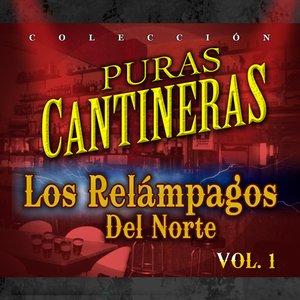 Puras Cantineras, Vol. 1