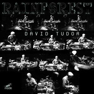 David Tudor: Rainforest (Versions 1 & 4)
