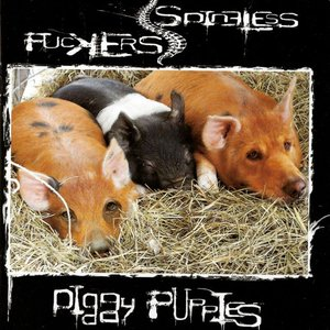 Piggy Puppies