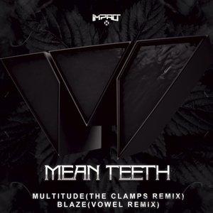 Multitude / Blaze (Remixes)