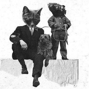 Von Katzen und Mäusen