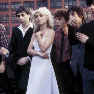 Bild für 'Blondie'