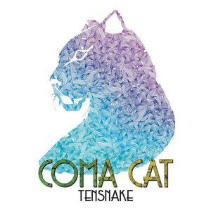 Coma Cat - EP