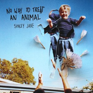 No Way to Treat an Animal