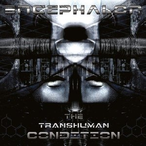 The Transhuman Condition