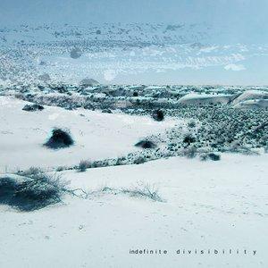 Indefinite Divisibility