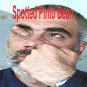 Bild für 'spotted pinto bean'