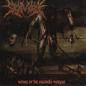 Wings Of The Desolated Morgue