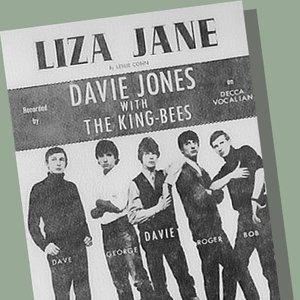 Avatar for Davie Jones and the King Bees