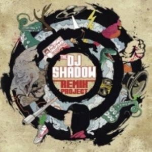 The DJ Shadow Remix Project