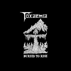 Buried to Rise: 1990-1991