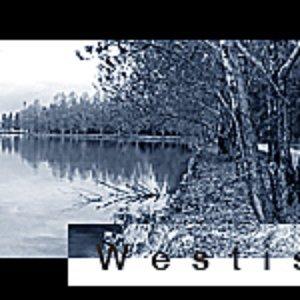 Avatar for Westis