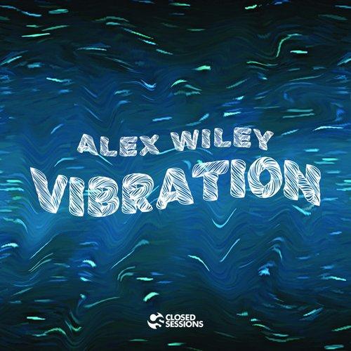 Vibration (Extended Version)