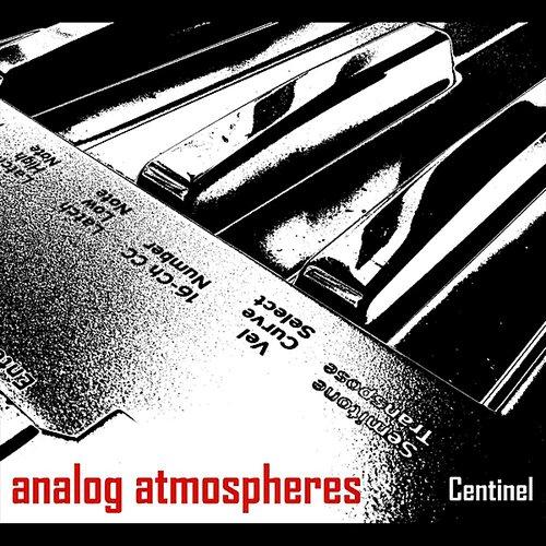 Analog Atmospheres