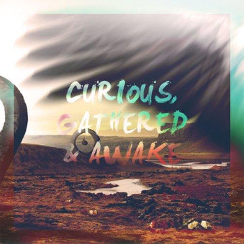 Curious, Gathered & Awake
