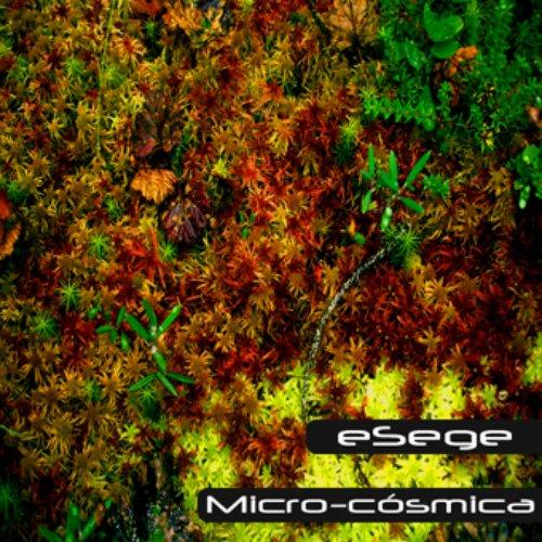 [chase 054] - eSege - Micro-cósmica
