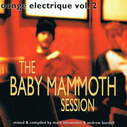 Lounge Electrique Vol. 2 (The Baby Mammoth Session)