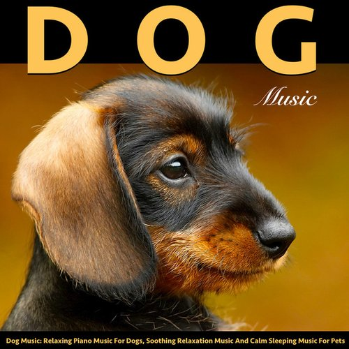 Music for Dogs: Relaxing Piano Dog Music and Soothing Sleeping Music for Pets