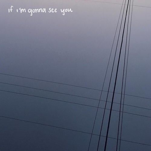 If I'm Gonna See You