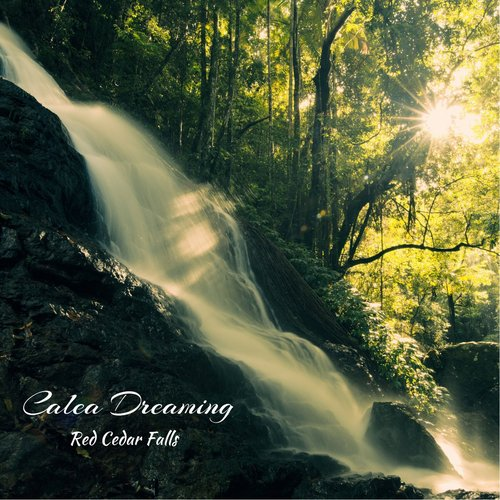 Red Cedar Falls