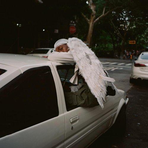 Negro Swan