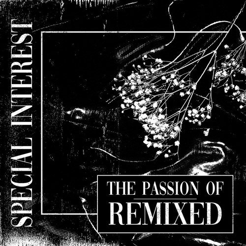The Passion Of: Remixed