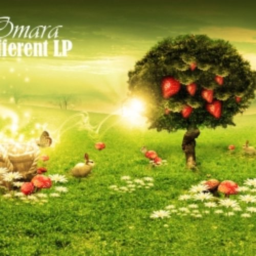 [omaramusic005] different LP
