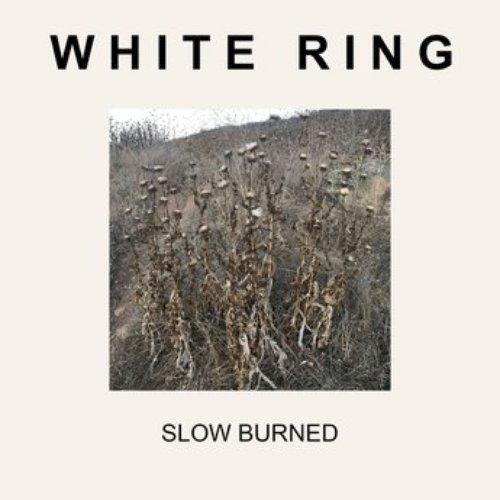Slow Burned - Single