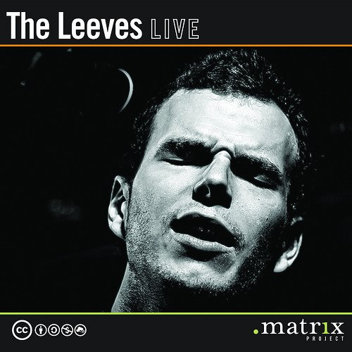 The Leeves Live at the dotmatrix project