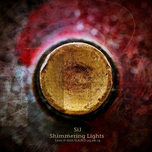 Shimmering Lights (Live @ ФИОLAND 23.08.14)