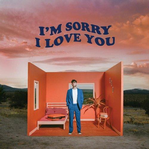 I'm Sorry I Love You