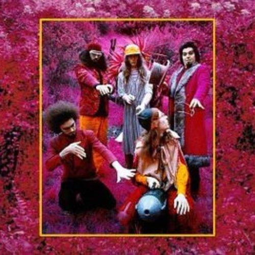 Grow Fins: Rarities (1965-1982)