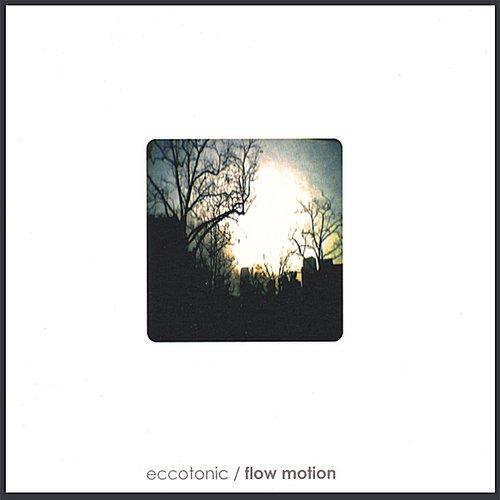 Flow Motion