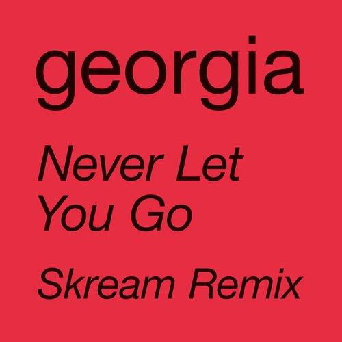 Never Let You Go (Skream Remix) - Single