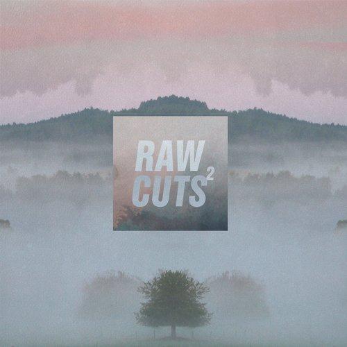 Chillhop Raw Cuts 2