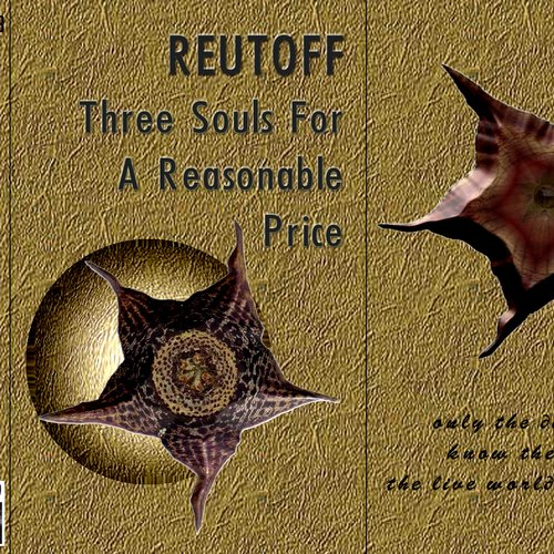 Three Souls For A Reasonable Price