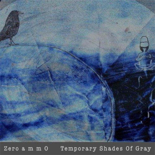 Temporary Shades Of Gray