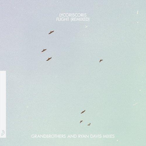 Flight (Remixed)