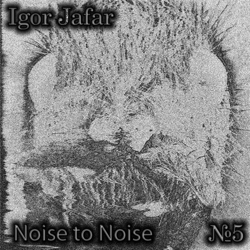 Noise To Noise №5