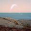 Cassandra Jenkins - An Overview on Phenomenal Nature album artwork