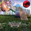 Fire-Toolz - Rainbow Bridge album artwork