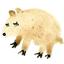 Аватар для Ann_Pearl
