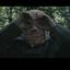 Avatar de phantom_ganon
