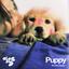 Doss - Puppy album artwork