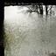 Bon Iver - For Emma, Forever Ago album artwork