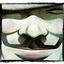 Avatar de Thankuol