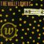 The Wallflowers - Bringing Down the Horse album artwork